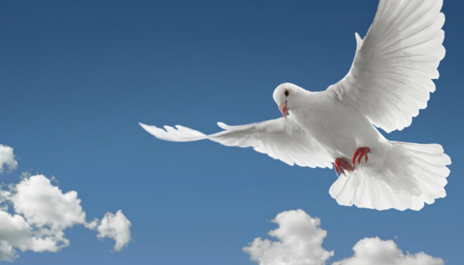 """La """"compagnia costante"""" dello Spirito Santo"""