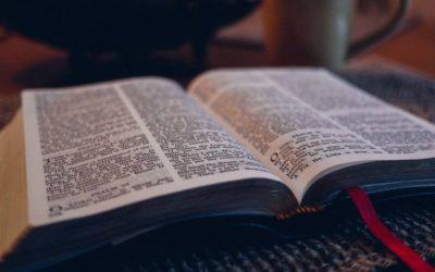 Come sapere se la Bibbia è vera: ecco i risultati di Google